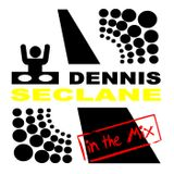 Dennis Seclane _in the mix_ summer shaking