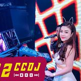 New Mandarin Chinese Club Dance Music 2016 (Ap娛樂) Dual Hi Park (Xiaogang & KK Exclusive).mp3
