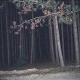 Deep Dark Dubstep Chalet Mix | September 6 2014