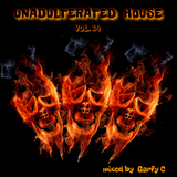 Unadulterated House Vol. 14