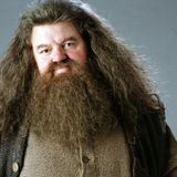 Harry Potter meets Jesus Sermon Podcast 7 - The Remorse of  Hagrid and the Return of Percy Weasly