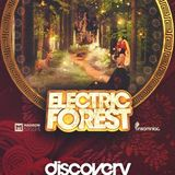DmoCobb - ELECTRIC FOREST 2015 OPEN CAST CALL Entry DJ MIX