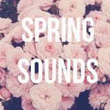 | Markoni || Spring Sounds || Weekly Update 01 |