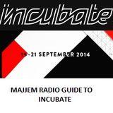 Majjem Radio Guide To The Incubate Festival 2014 (Part 4: Saturday)