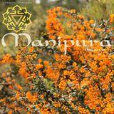 Manipura - 3° chakra -  Mago del Bosque_ Energia Vital - Sonidos Alupran