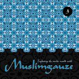 Signalstoerung - Exploring The Arabic World With Muslimgauze Pt. 3