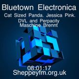 Bluetown electronica live show 08.01.17