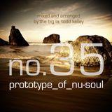 Prototype of Nu-Soul 35