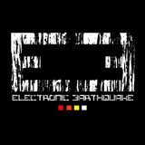 Sasan Malgard Electronic Earthquake Podcast