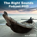 Denis Reshmeda - The Right Sounds Podcast #025
