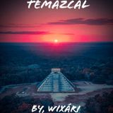TEMAZCAL PROGRESSION TO LIFE