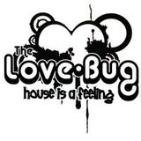 LOVE-BUGs 8th Birthday, Funky Toast set