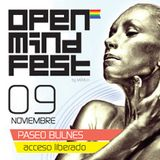Meste - Open Mind Fest 2013 (Santiago, Chile)