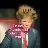 S2- Trump Tweets and other funny crap