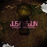 Just Begun (DJ vs. Conga)