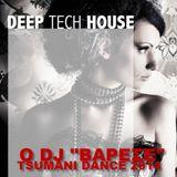 TSUMANI DANCE HITS - minimix 2014 vol 1
