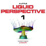 A Little Liquid Perspective 1: A Liquid DnB Session