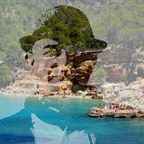 Ibiza Beach Beach Vibe