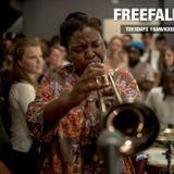 FreeFall 847