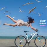 Deep Birds