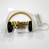 Hallgatni Arany / Balaton NET - TV; Balatonszemes; Ez az a nap; Ulrich Parzany / 2017. 10. 20.