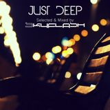 Just Deep (Selected & Mixed By Skyflash)