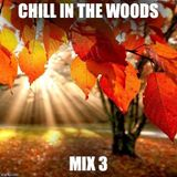 Chill In The Woods Mix 3 (Chill Out / Deep House Mix)