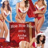 Hoe Hoe Hoe 2013 - Merry Xmas - Aroha x