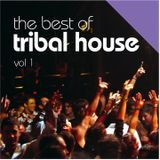 The Best Of Tribal House
