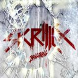 skrillex best tracks (Dj amil the observer mix)