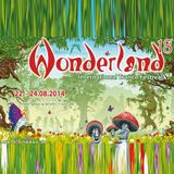 Sascha Flux at Wonderland Festival 2014