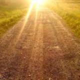 Phantom Circuit #141 (1st June 2014): Sun streams through