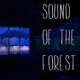 Ach&Krach at Sound Of The Forest Festival (live recording) // 23.08.2014