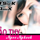 NgocNghech-BaoThy RMX By DJ SharK
