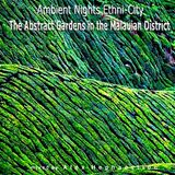 Ambient Nights - Ethni-City CD12-The Abstract Gardens in the Malauian District