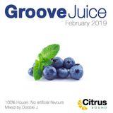 Groove Juice Blueberry - February 2019