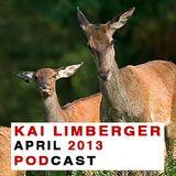 Kai Limberger Podcast April 2013