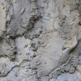 Wet Cement Mix (live on Radio Dada 2/5/19)