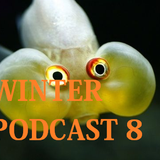 Winter Mix 80 - Podcast 8 (June 2016)