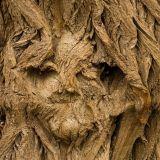 Wooden (EclecticAmbientTrip)