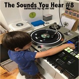 The Sounds You Hear #8