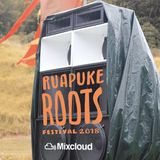 Ruapuke Roots Reminisce