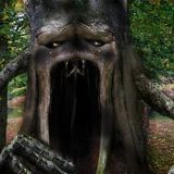 May 2014 Psy Forest Mix: Tales Of The Cursed Tree IV