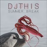 Summer Break - Chill Out / Trip Hop/ Dub - DJ THIS