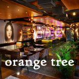 Kayla' Caryapadas mix - SONGS for ORANGE TREE