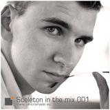 Sceleton in the mix 001