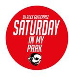 Saturday in my Park DJ Alex Gutierrez