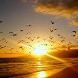 Magic Sunset 058