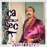 Funky Mix : Ca mitraille Sec ! - a Mixtape by Smallpunk