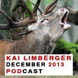 Kai Limberger Podcast December 2013